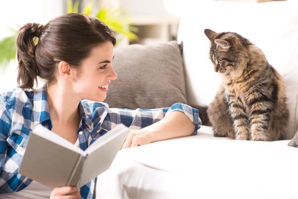 Amantes de los gatos, hoy es su día