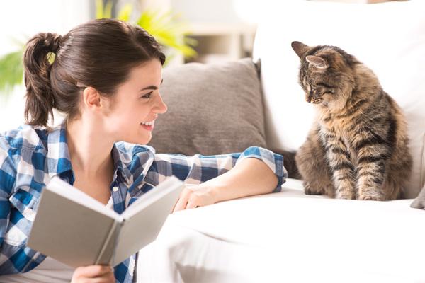 El Día Internacional del Gato se celebra cada 20 de febrero