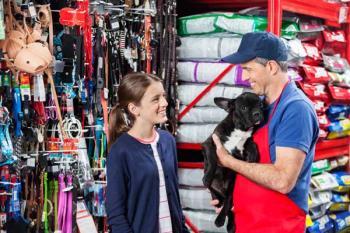 Regular las protectoras sin refugio y limitar las tiendas de mascotas, novedades que contempla la normativa